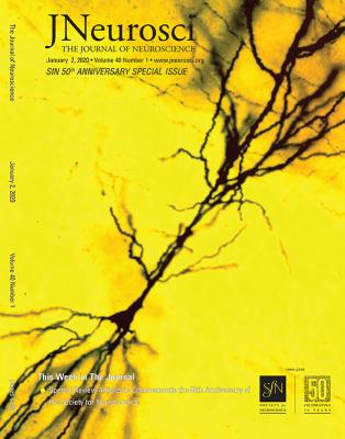 2020_j_neurosci_harris_synaptic_odyssey_hi-res_cover_72ppi.jpg