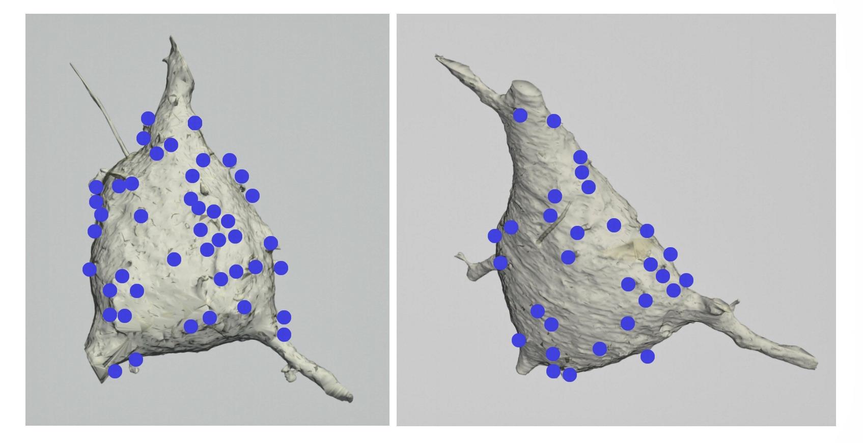 fig._1.3.16._.jpg